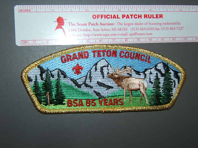 thescoutpatchauction.com