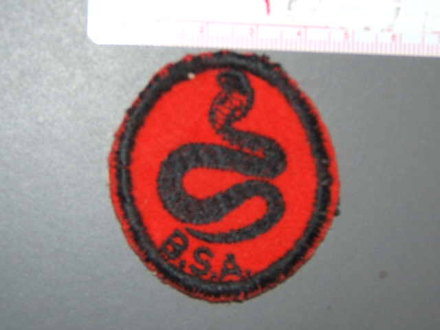 Cobra Patrol Medallion