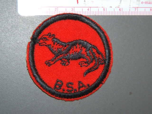 Otter Patrol Medallion