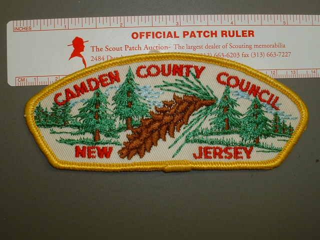 Camden County C CSP
