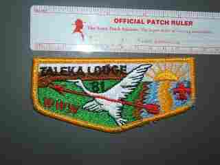 81 Taleka flap