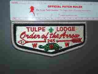 245 Tulpe flap